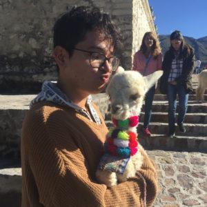 Manuel Cerda with a llama